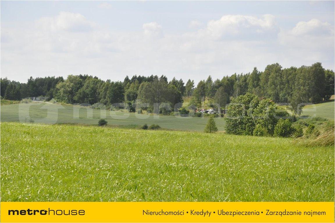 Działka rolna na sprzedaż Blanki, Lidzbark Warmiński  10921m2 Foto 8