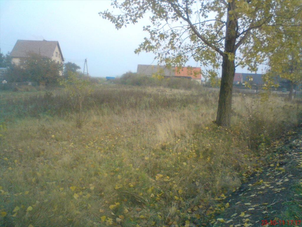 Działka budowlana na sprzedaż Zabłoto  3666m2 Foto 2