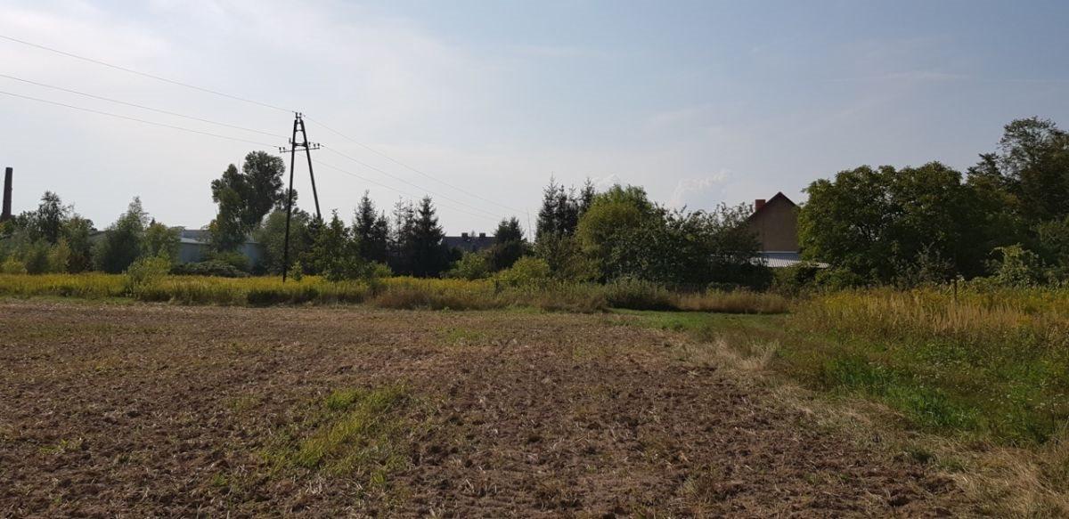 Działka rolna na sprzedaż Czernica  9534m2 Foto 7