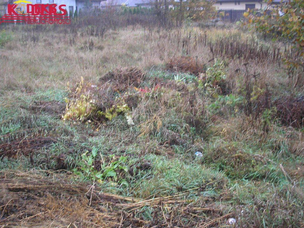 Działka budowlana na sprzedaż Skierdy  1030m2 Foto 6