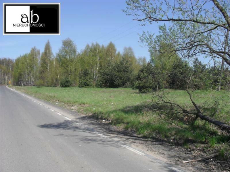 Działka inna na sprzedaż Częstochowa, Mirów  13249m2 Foto 2