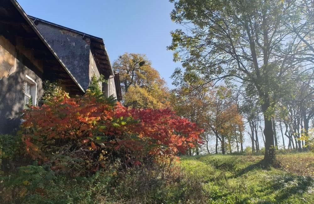 Dom na sprzedaż Rusocin  741m2 Foto 13