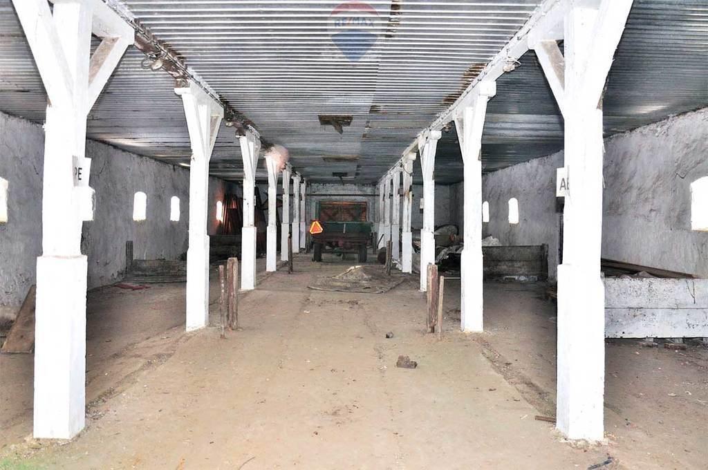 Działka rolna na sprzedaż Mińsk Mazowiecki  964357m2 Foto 9