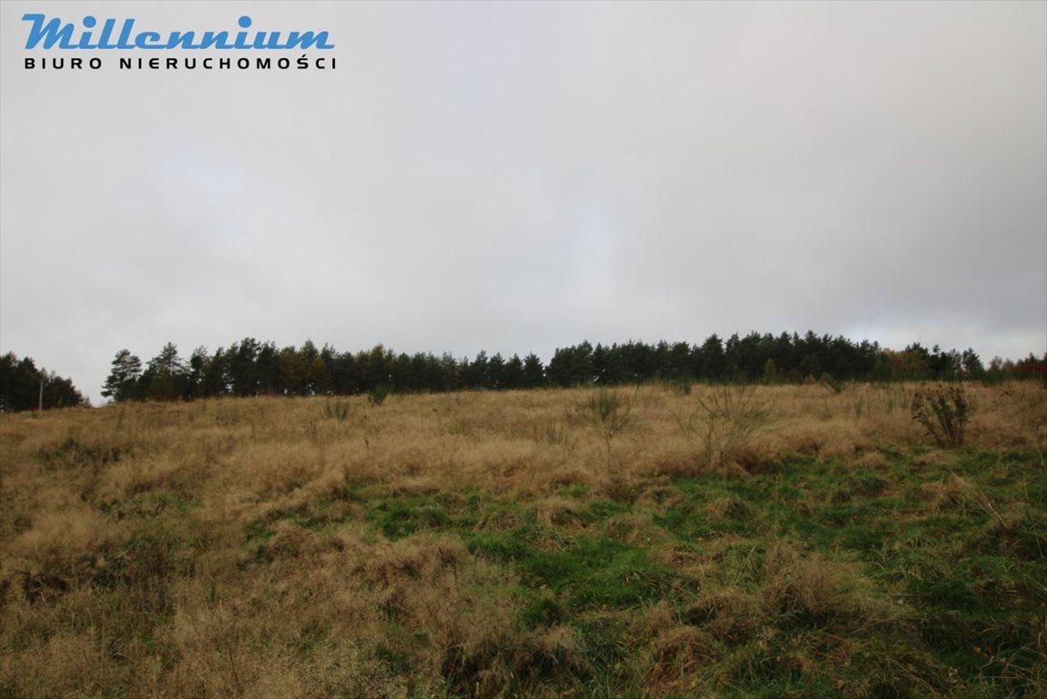 Działka rolna na sprzedaż Nowy Dwór Wejherowski  18766m2 Foto 3
