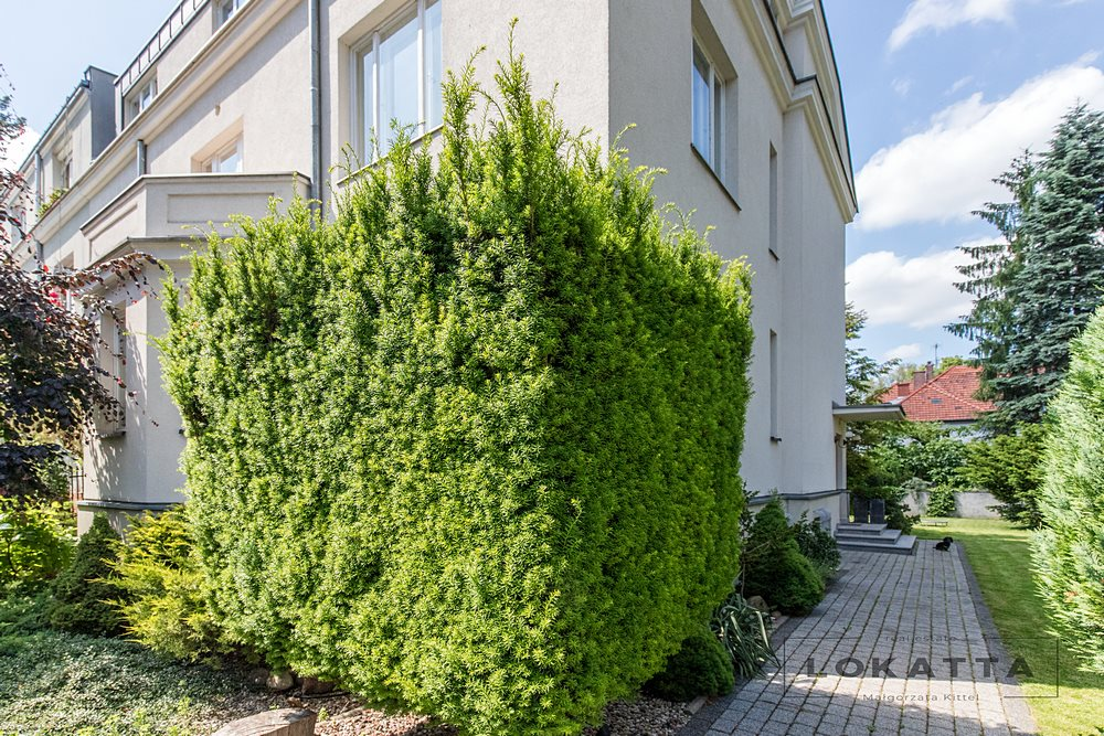 Mieszkanie dwupokojowe na sprzedaż Warszawa, Żoliborz  102m2 Foto 3