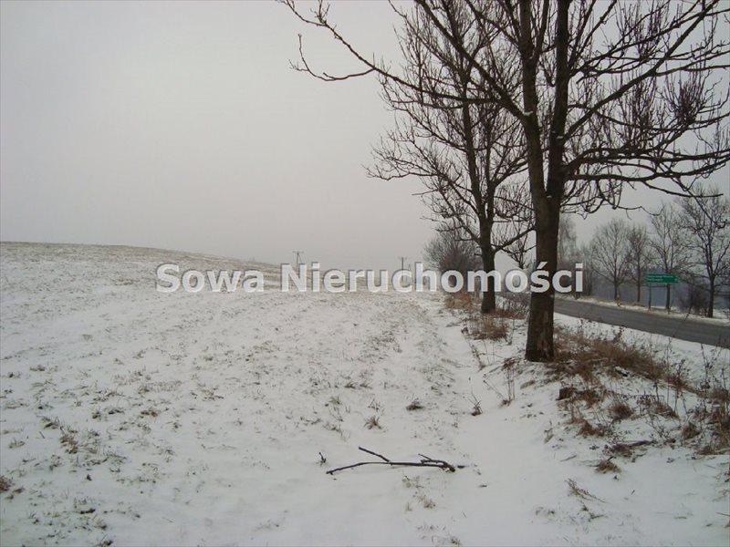 Działka inwestycyjna na sprzedaż Jabłów  14100m2 Foto 2