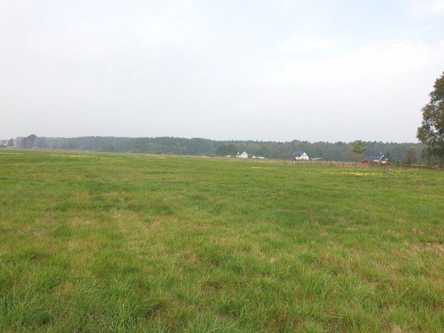 Działka rolna na sprzedaż Dobra, TRASZKI  3350m2 Foto 3