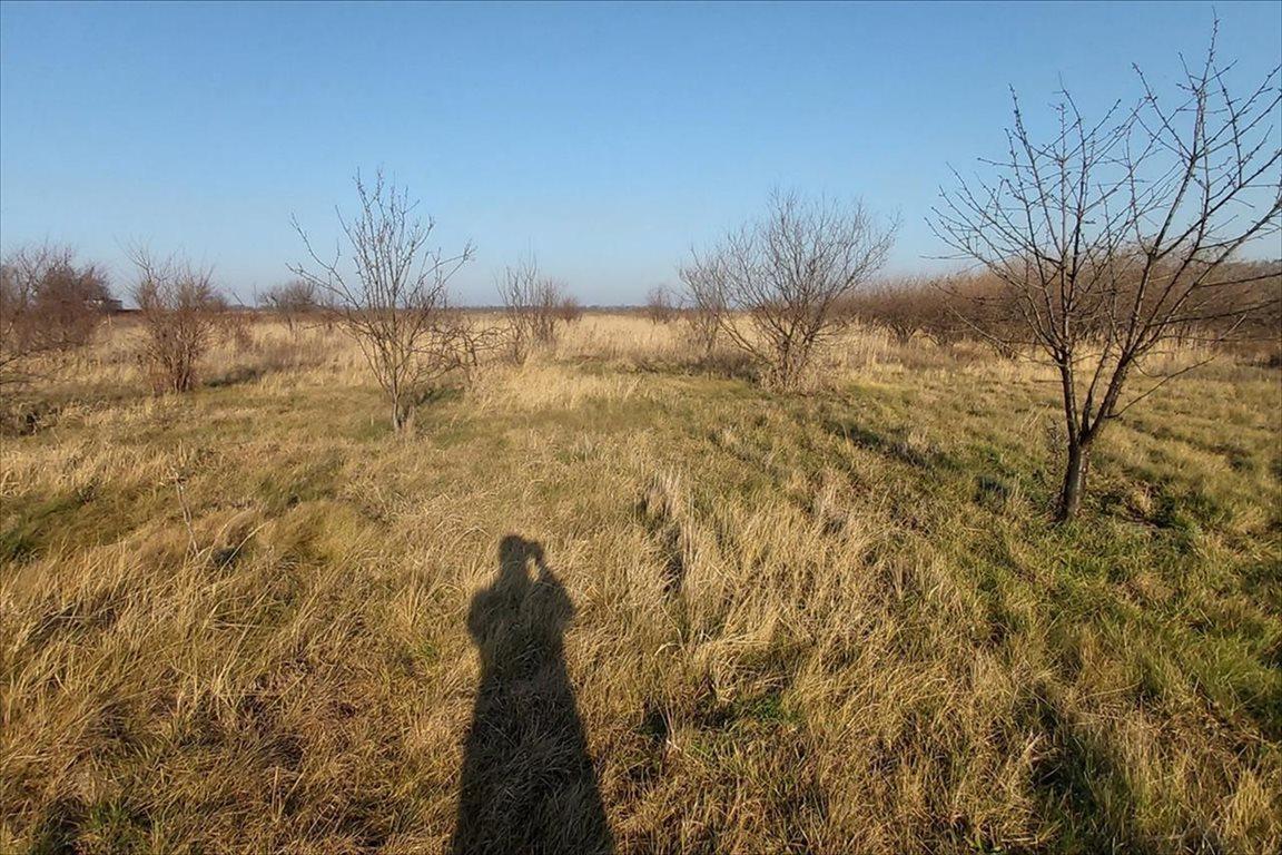 Działka rolna na sprzedaż Gałów, Miękinia  276m2 Foto 6