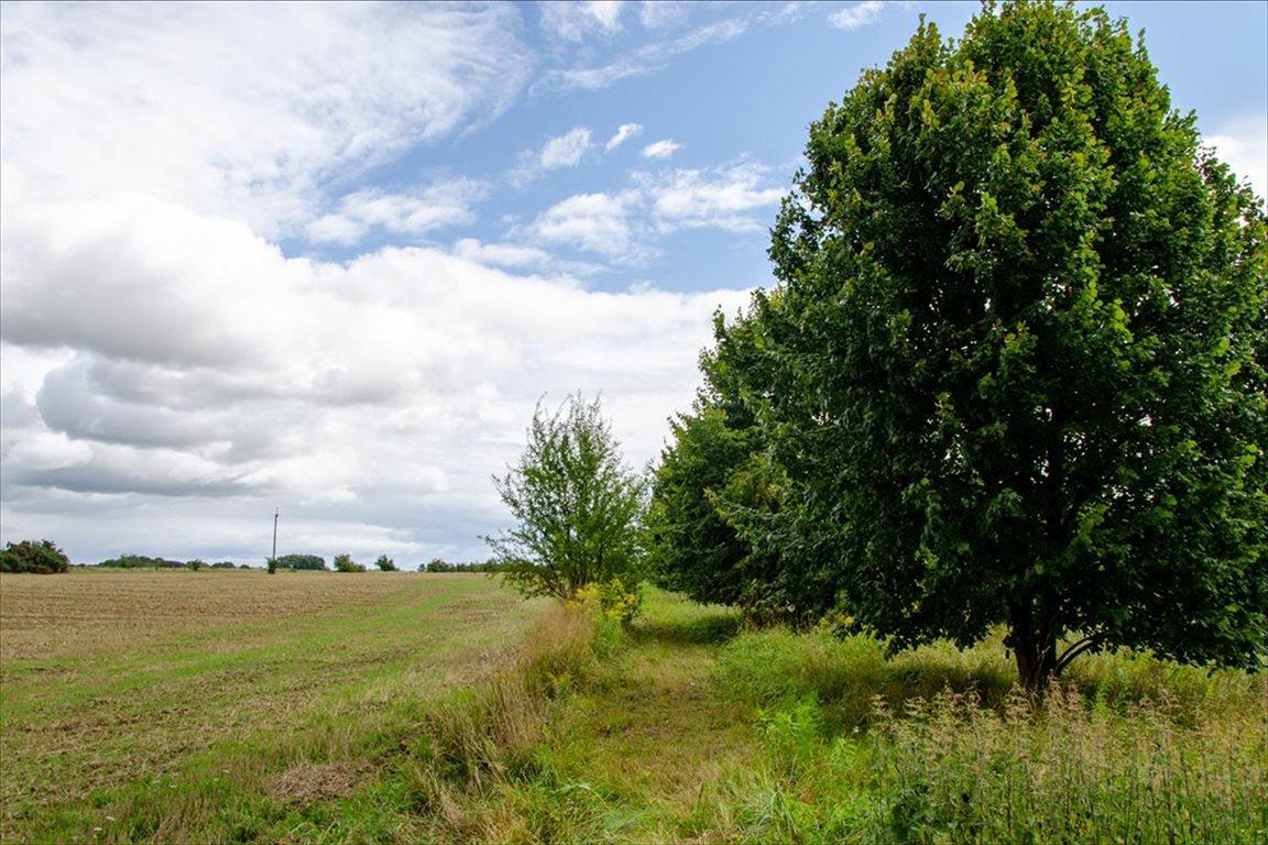Działka siedliskowa na sprzedaż Wełtyń, Gryfino  18700m2 Foto 1