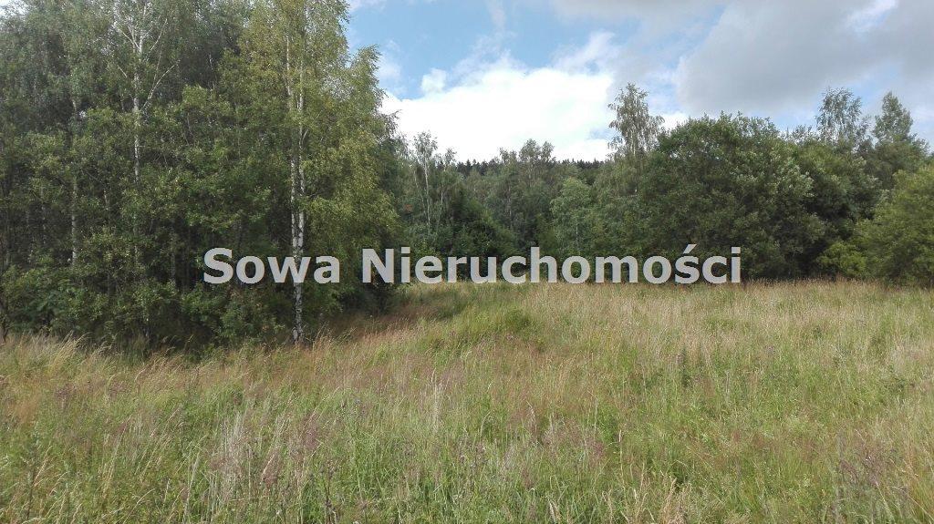 Działka inna na sprzedaż Mieroszów, okolice Mieroszowa  14209m2 Foto 6