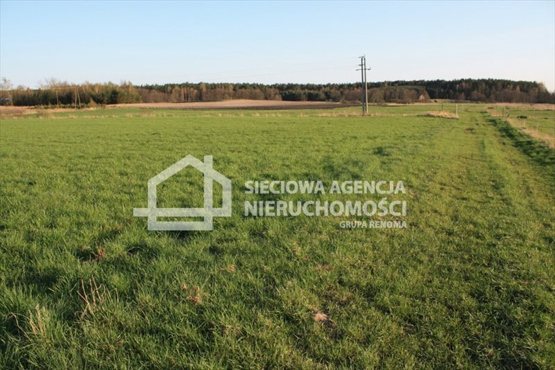 Działka siedliskowa na sprzedaż Stara Kiszewa  8767m2 Foto 11