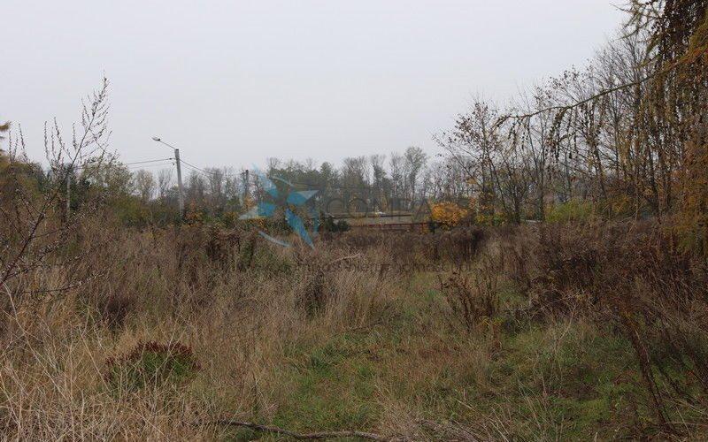 Działka komercyjna na sprzedaż Tulce, Tulce  9387m2 Foto 1