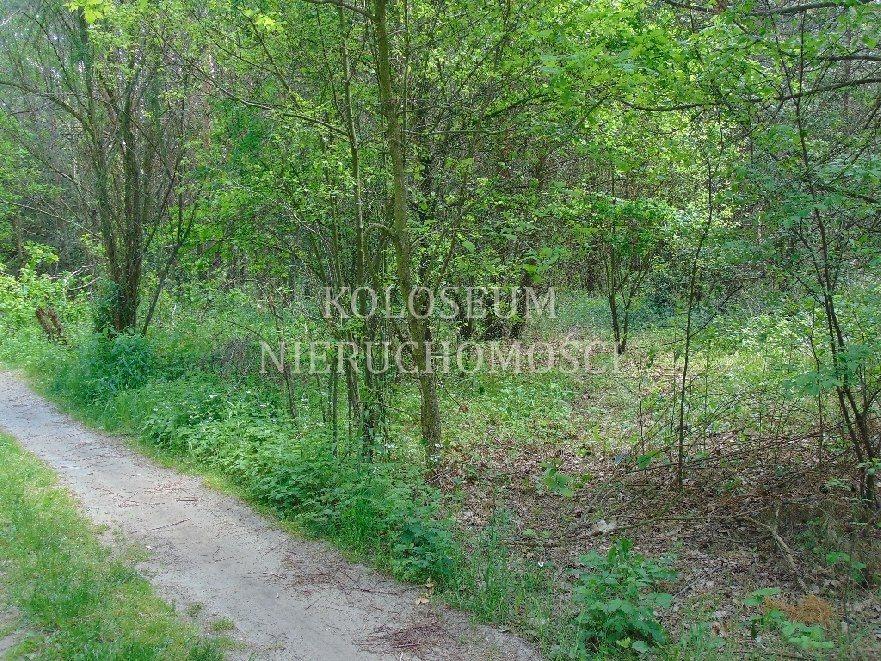 Działka rekreacyjna na sprzedaż Biała  1300m2 Foto 1