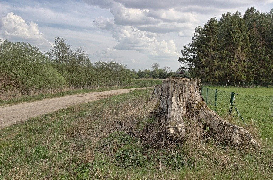 Działka rolna na sprzedaż Kołczewo  22223m2 Foto 1