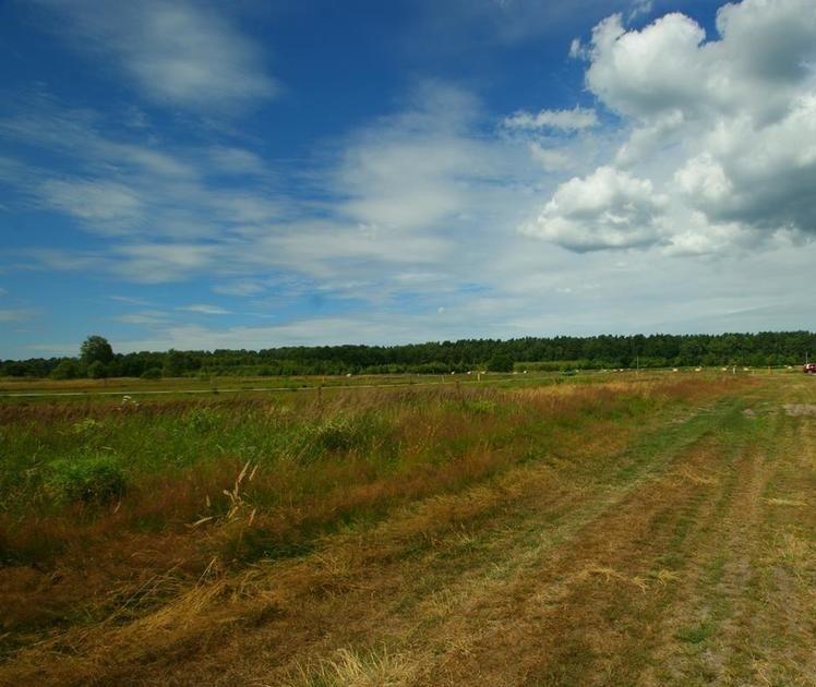 Działka budowlana na sprzedaż Białuń  2000m2 Foto 4