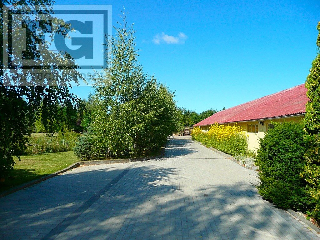 Lokal użytkowy na wynajem Juszkowo, Cisowa  351m2 Foto 6