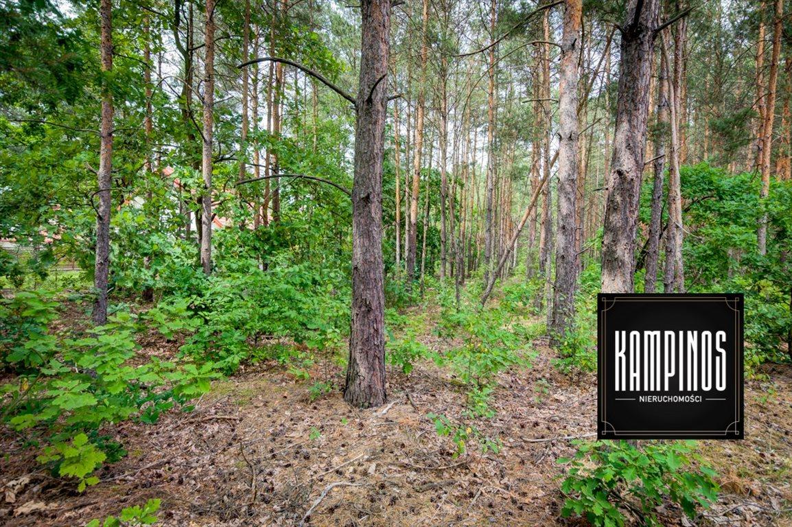 Działka budowlana na sprzedaż Truskaw, Izabelin, oferta 2793  2000m2 Foto 1