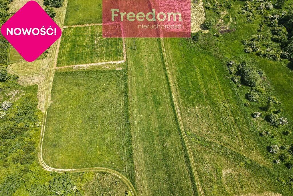 Działka rolna na sprzedaż Nowy Borek  4500m2 Foto 8