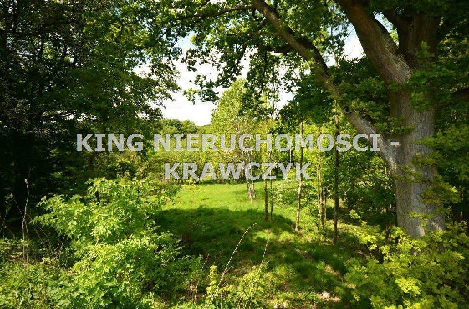 Działka inna na sprzedaż Szczecin, Bukowo  19000m2 Foto 1
