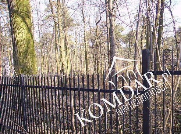 Działka leśna na sprzedaż Podkowa Leśna, Jana Pawła II  2000m2 Foto 4