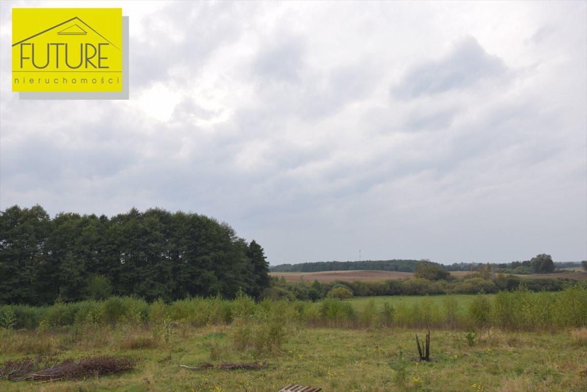 Działka rolna na sprzedaż Liksajny  1189m2 Foto 5