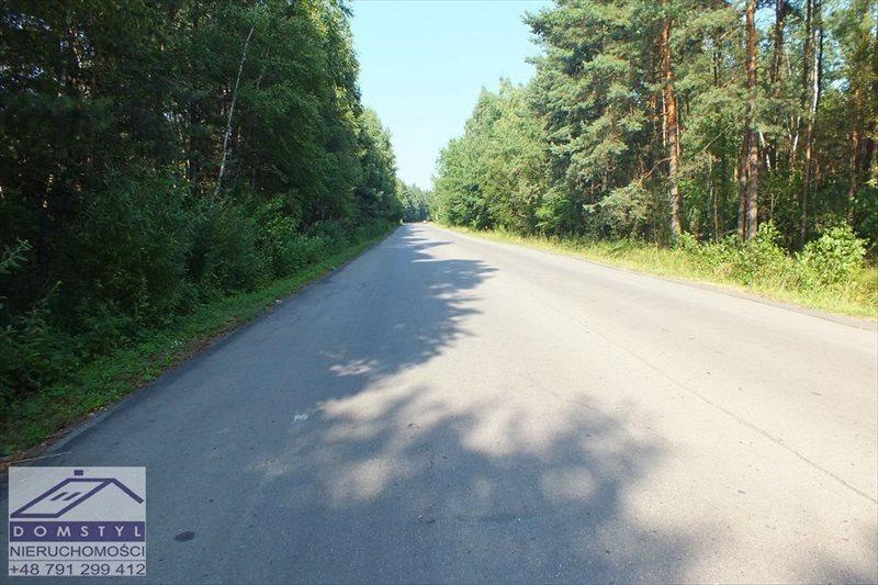 Działka leśna na sprzedaż Zawiercie, Blanowice, zawierciański  64912m2 Foto 3