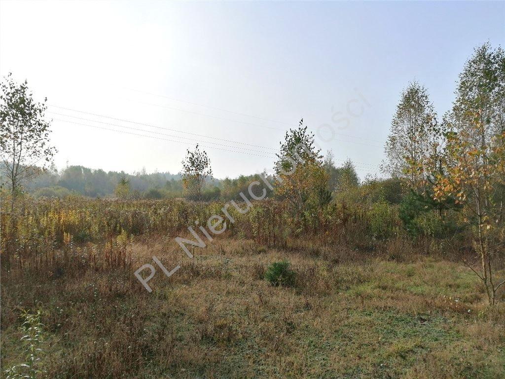 Działka rolna na sprzedaż Rakówiec  3896m2 Foto 4