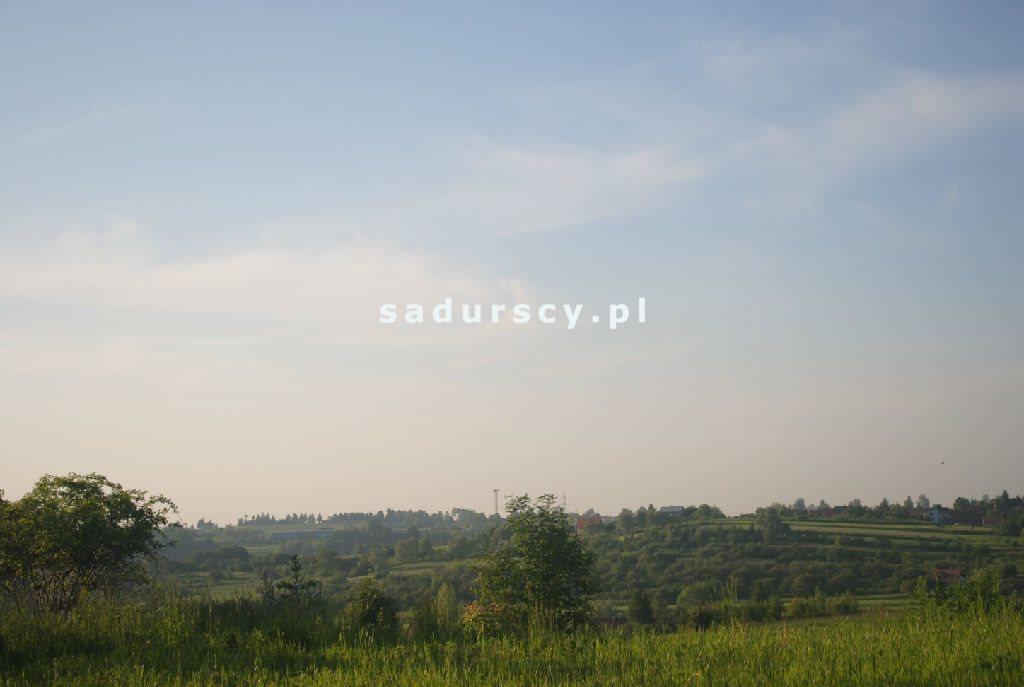 Działka leśna na sprzedaż Aleksandrów  50000m2 Foto 8