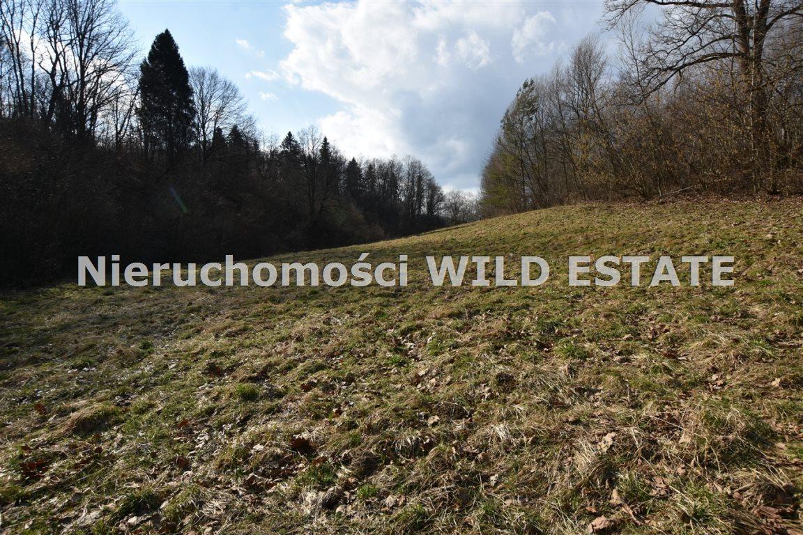Działka rolna na sprzedaż Solina, Myczkowce  5100m2 Foto 4