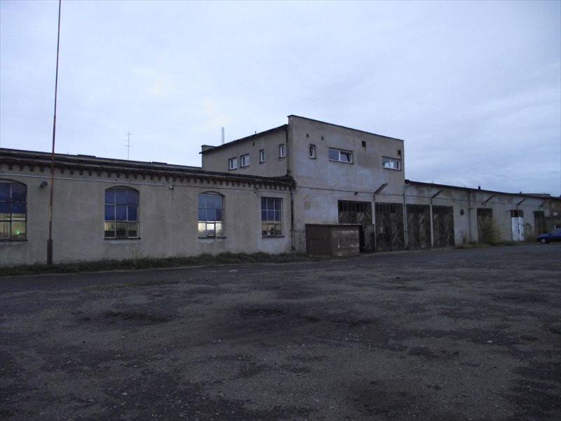 Lokal użytkowy na sprzedaż Sulechów  2764m2 Foto 2