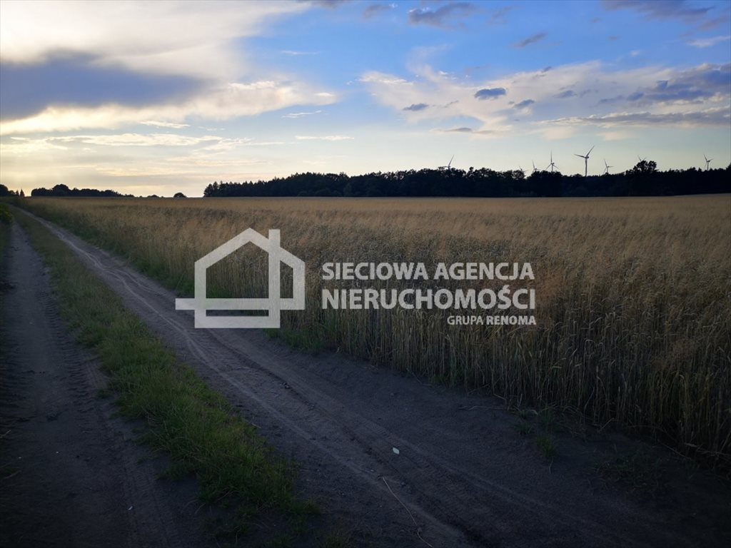 Działka rolna na sprzedaż Białogarda  148300m2 Foto 7