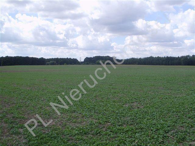 Działka rolna na sprzedaż Pasikonie  80347m2 Foto 6