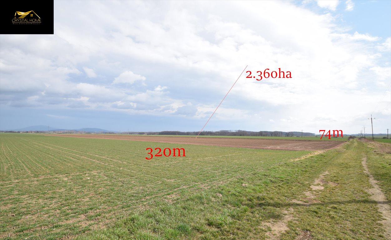 Działka rolna na sprzedaż Burkatów  23600m2 Foto 1