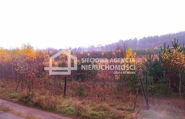 Działka leśna na sprzedaż Skwierawy  64900m2 Foto 7
