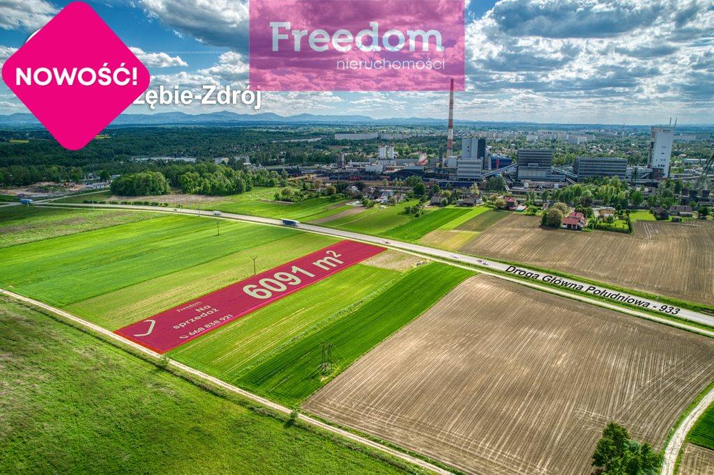 Działka inwestycyjna na sprzedaż Jastrzębie-Zdrój, Dębina  6091m2 Foto 3