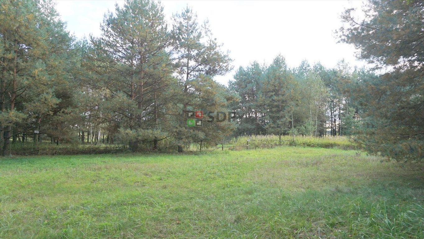 Działka siedliskowa na sprzedaż Jelcz - Laskowice, Główna  3000m2 Foto 3