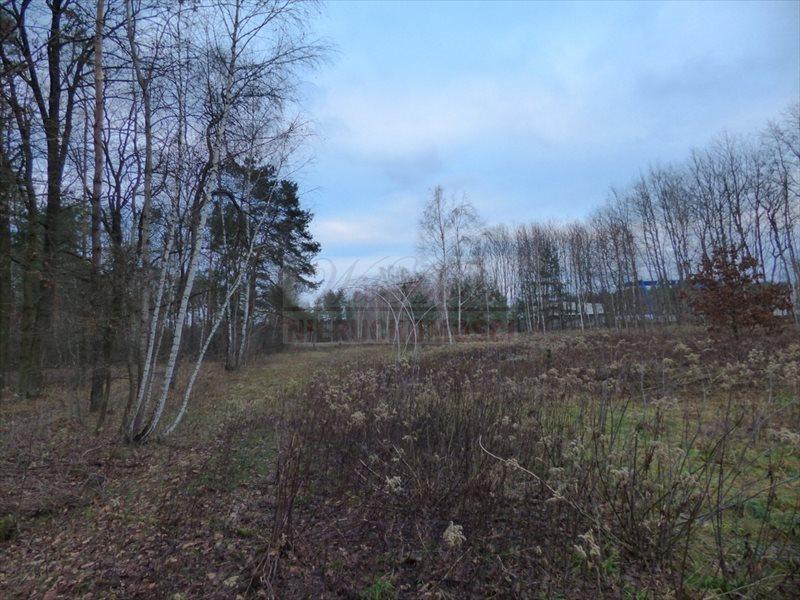 Działka rolna na sprzedaż Radzymin  7119m2 Foto 1