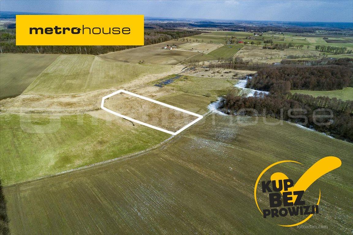 Działka rolna na sprzedaż Piskajny, Godkowo  11900m2 Foto 1