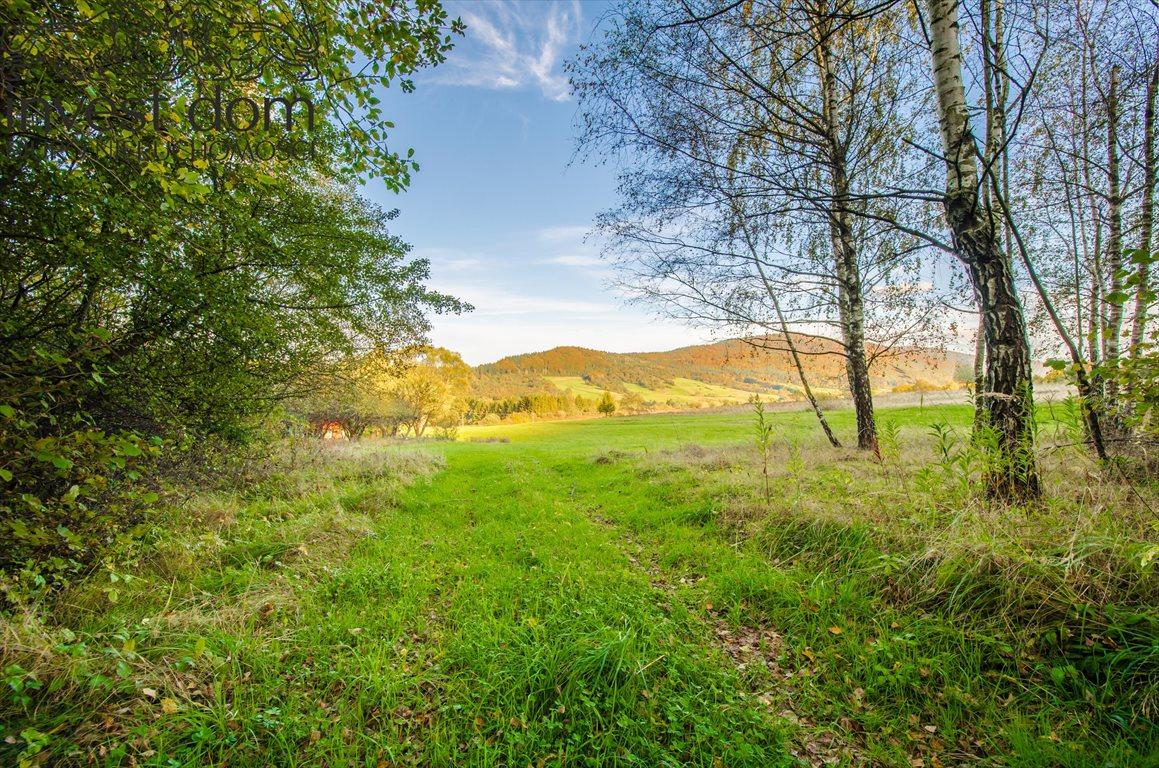 Działka rolna na sprzedaż Hańczowa  25500m2 Foto 3