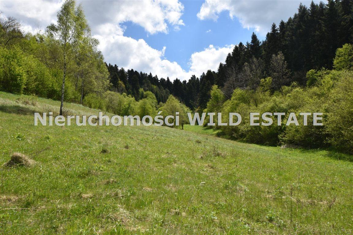 Działka rolna na sprzedaż Olszanica  17148m2 Foto 1