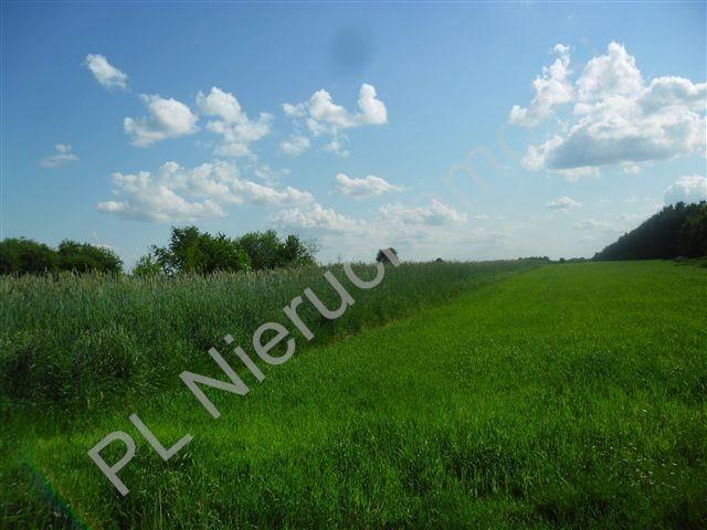 Działka rolna na sprzedaż Jeruzal  18000m2 Foto 1