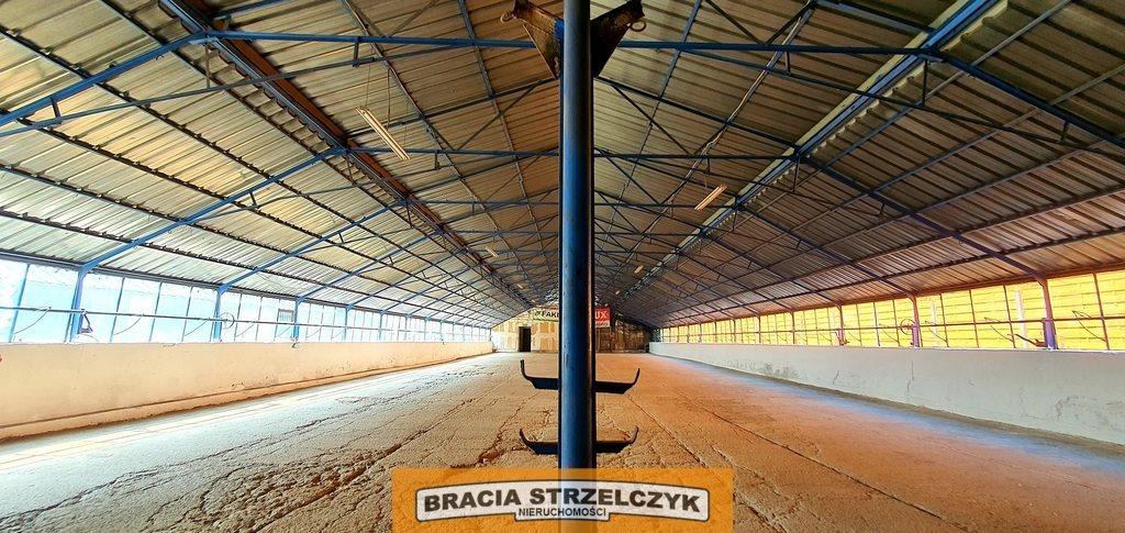 Lokal użytkowy na wynajem Jabłonna, Modlińska  700m2 Foto 6