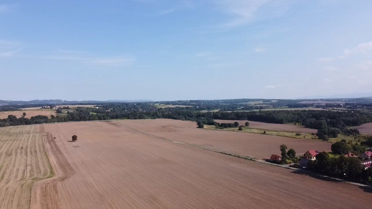Działka rolna na sprzedaż Gryfów Śląski, Rzeczna  22430m2 Foto 2