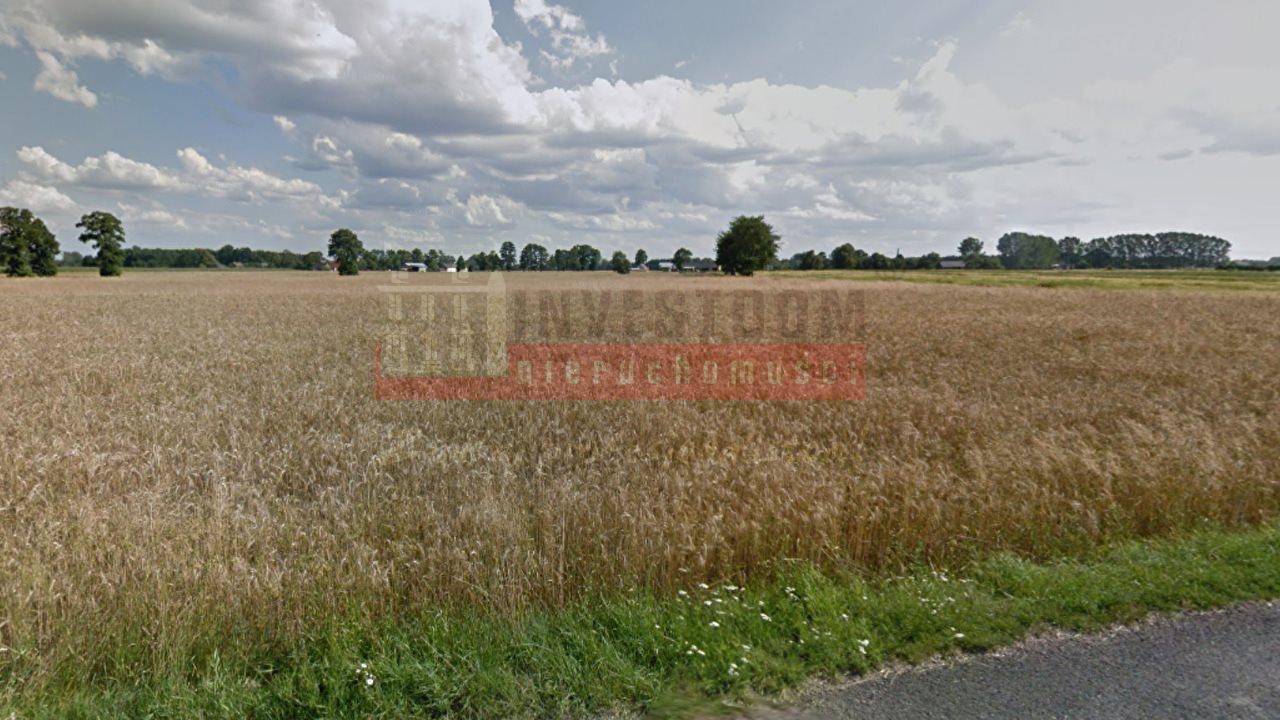 Działka inna na sprzedaż Opole, Czarnowąsy  1000m2 Foto 1