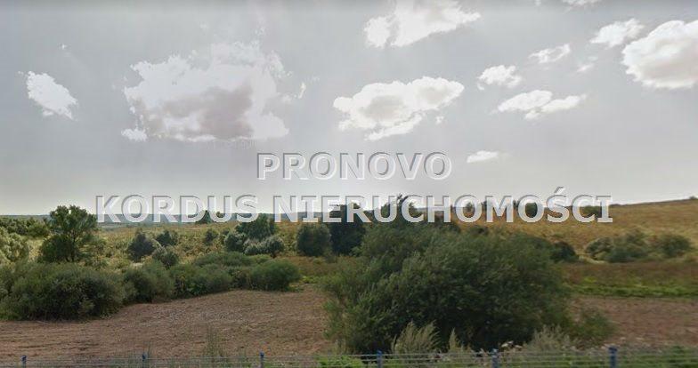 Działka leśna na sprzedaż Wojtkowa, Trzcianiec  1958400m2 Foto 9