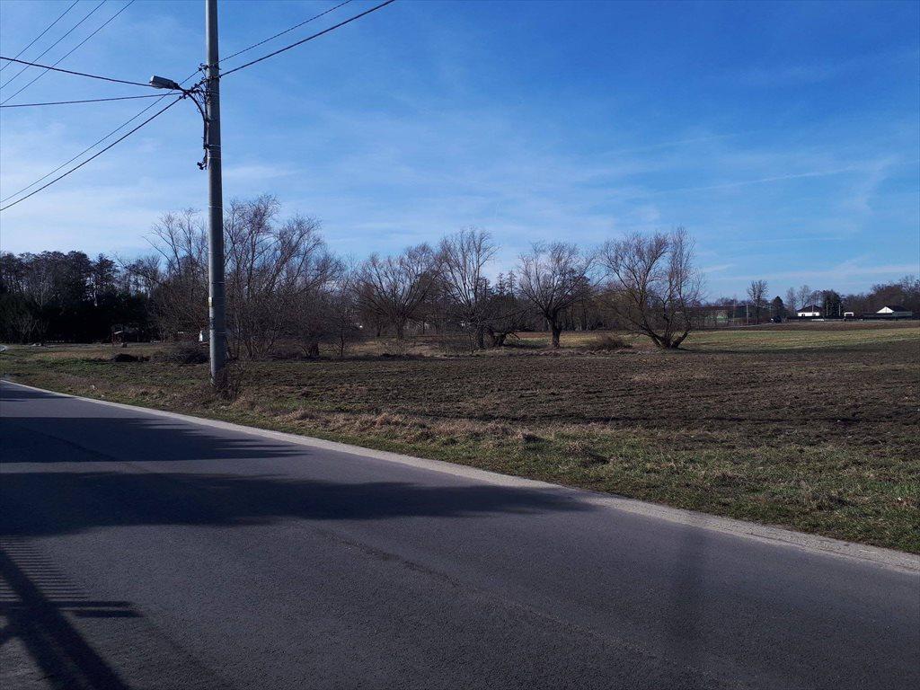 Działka rolna na sprzedaż Konstancin-Jeziorna, Obórki  10000m2 Foto 5