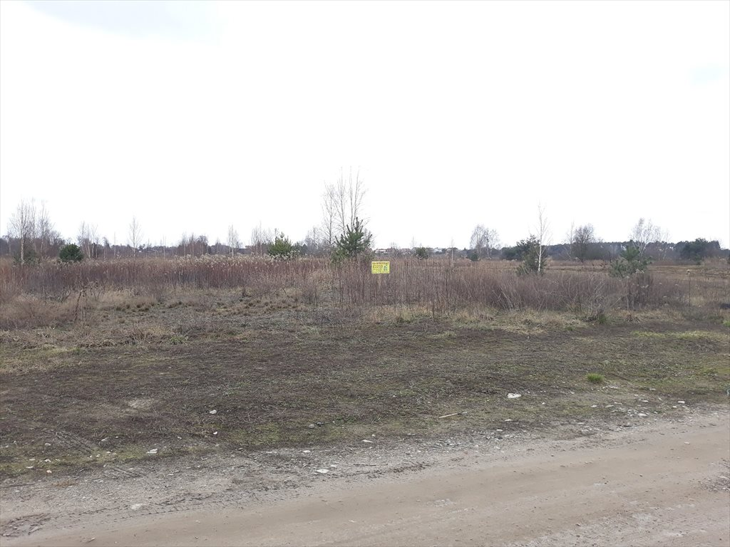 Działka budowlana na sprzedaż Stare Babice, Borzęcin Duży  4500m2 Foto 7