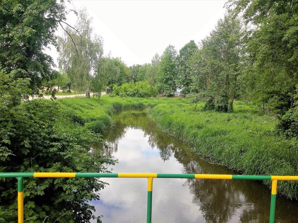 Działka leśna na sprzedaż Stary Kraszew  18100m2 Foto 4