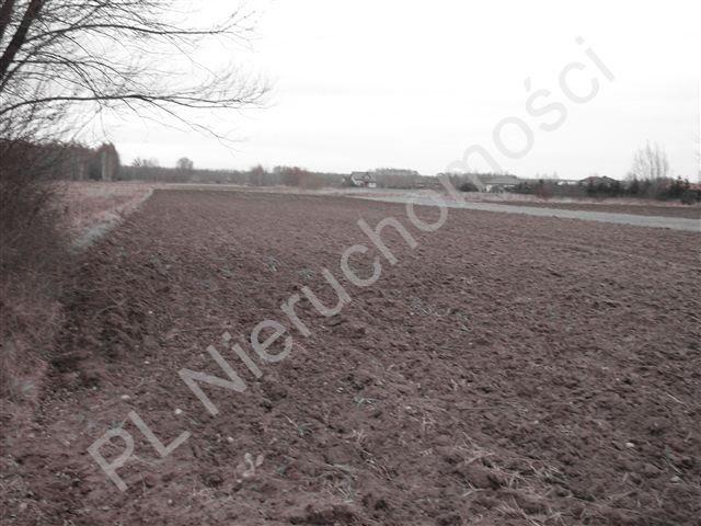 Działka rolna na sprzedaż Jastrzębnik  12730m2 Foto 3