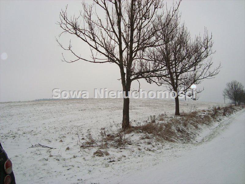 Działka inwestycyjna na sprzedaż Jabłów  14100m2 Foto 1